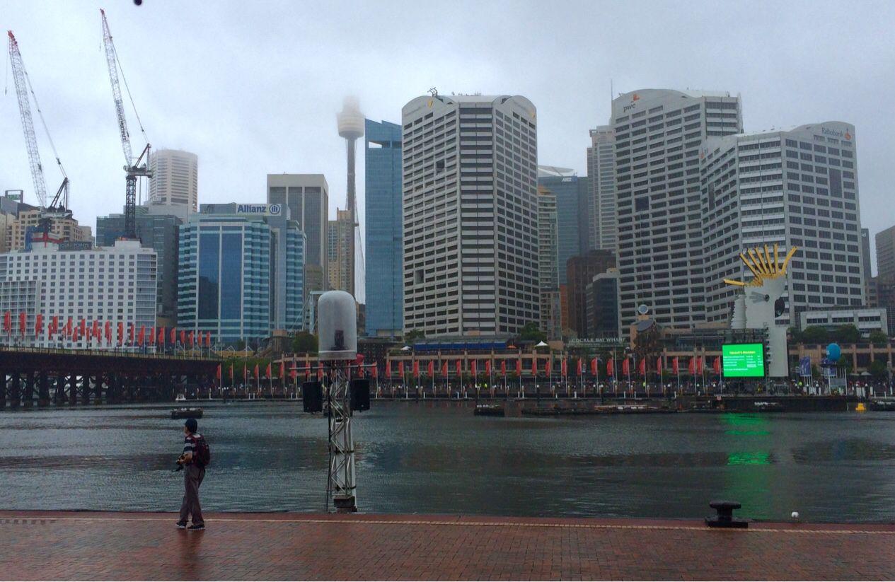 Photo Number 027. Wet city, Sydney CBD #auphotoproject #sydney