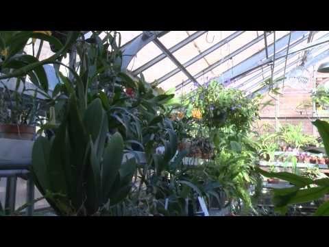 ARTS OVERLOOK: 2015 Beers To You | UNI Botanical Center - YouTube.
