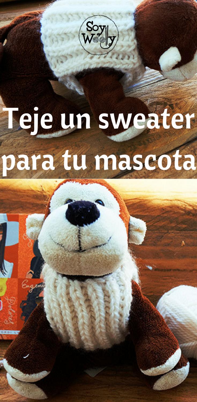 La forma más fácil de tejer un jersey para tu mascota | Gatitos ...