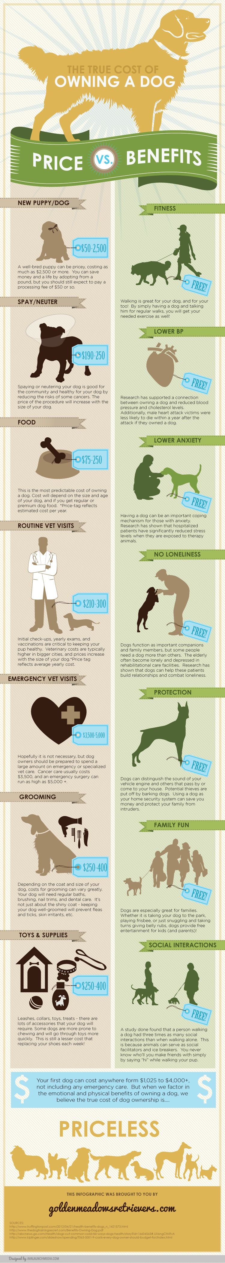 Presented by Golden Meadows Retrievers - Here is an awesome side by side comparison graphic showing the true cost of owning a dog - Price vs Benefits