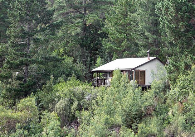 The fantastic Forest Valley Cottages are hidden away in the Knysna forest.