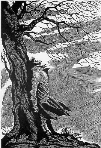 Resultado de imagem para wuthering heights illustrations