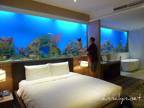 wall to wall aquarium... a must for my future home. | Wall aquarium, Home,  Hotel