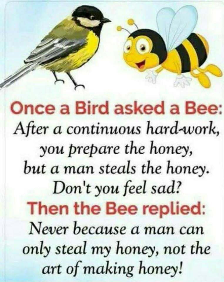 ONCE A BIRD ASK A BEE is part of Good morning quotes -