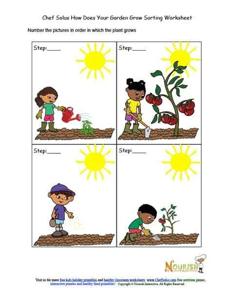 Kids Garden Chronological Sorting Activity Worksheet Fun Worksheets For Kids Gardening For Kids Worksheets For Kids Chronological order worksheets