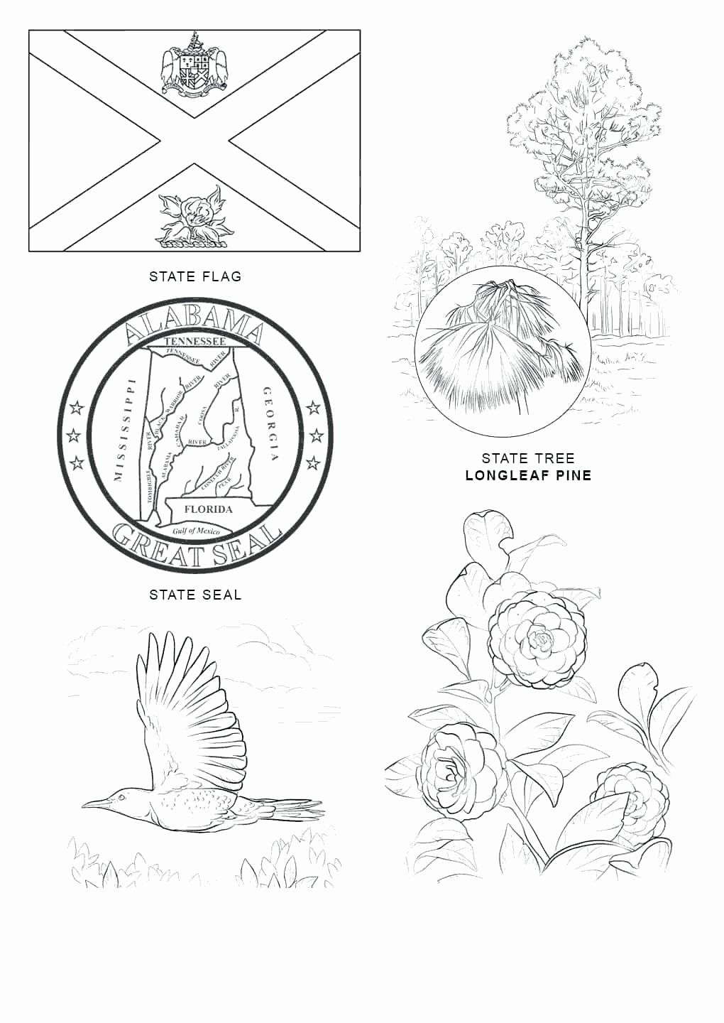 Michigan State Symbols Coloring Pages Fresh Tennessee Flag