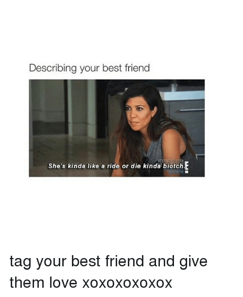 Describing Your Best Friend Goals Share With Your Friends Www Noruleshere Com Quotes Life Memes Describe Your Best Friend Best Friend Meme Best Friends