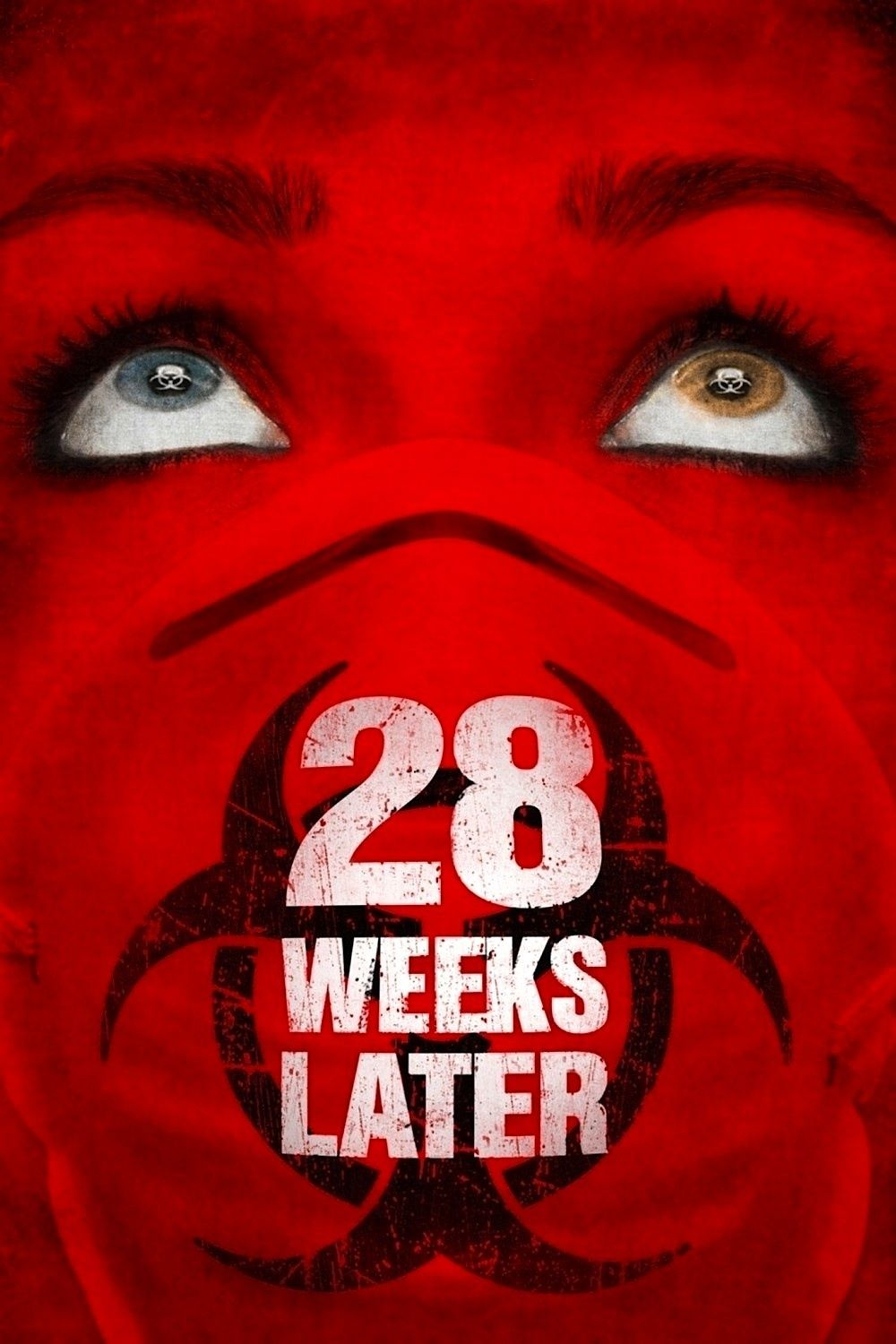 28 Weeks Later 👍 (With images) Zombie movies, Horror