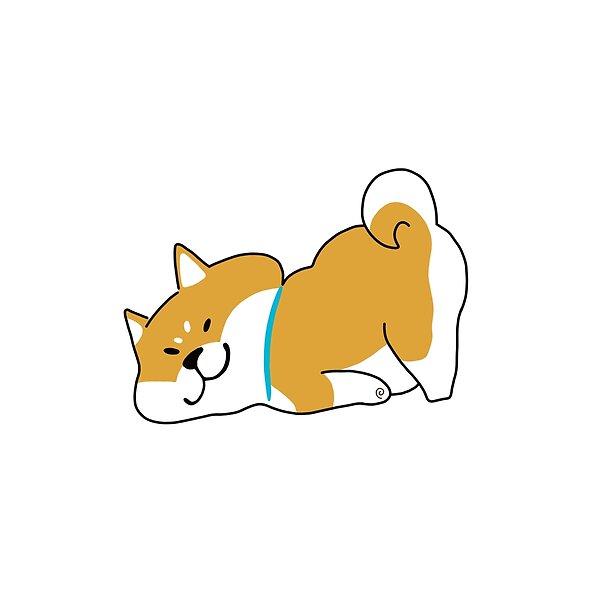 A Very Cute Shiba Inu Dog Shiba Inu Dog Shiba Inu Shiba