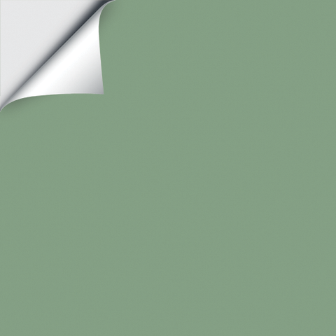 Best Sage Samplize With Images Farrow And Ball Paint 400 x 300