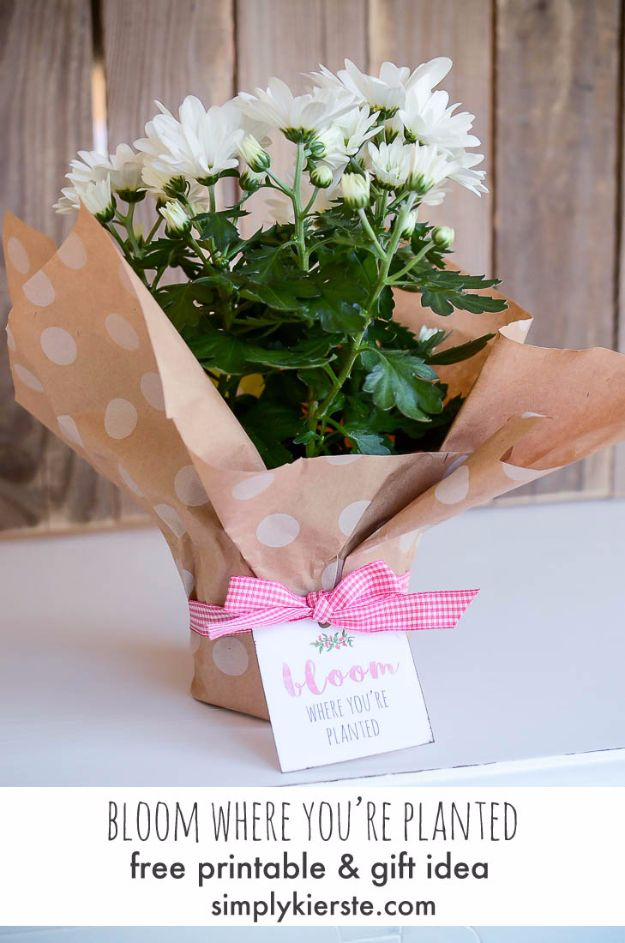 33 Best DIY Housewarming Gifts | Geschenke verpacken | Pinterest ...