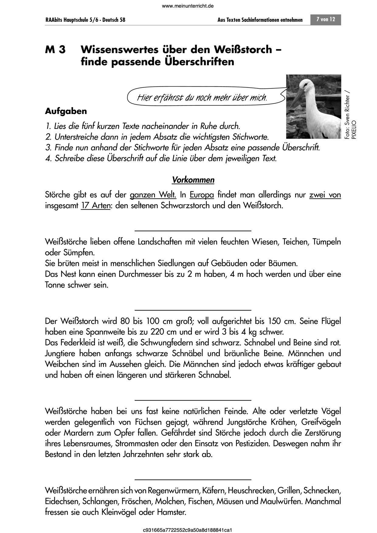 Sachtexte   Arbeitsblätter für Deutsch   meinUnterricht   Genaues ...