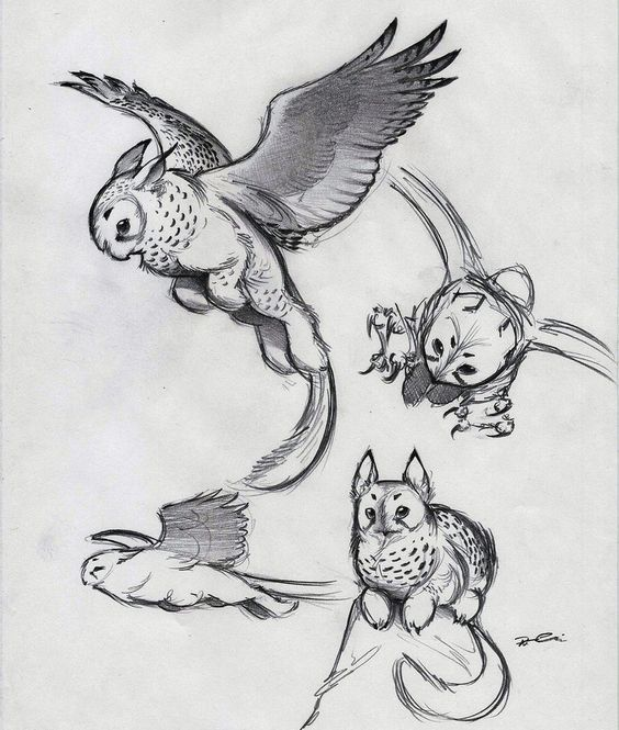 And Yet More Owl Griffin By Robthedoodler On Deviantart Creature Drawings