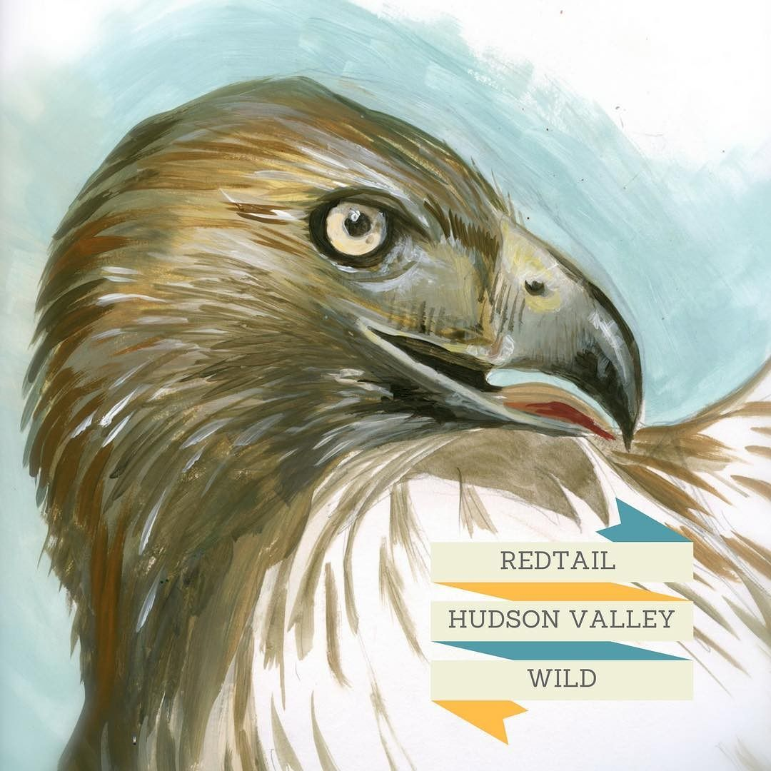 #hudsonvalleywild