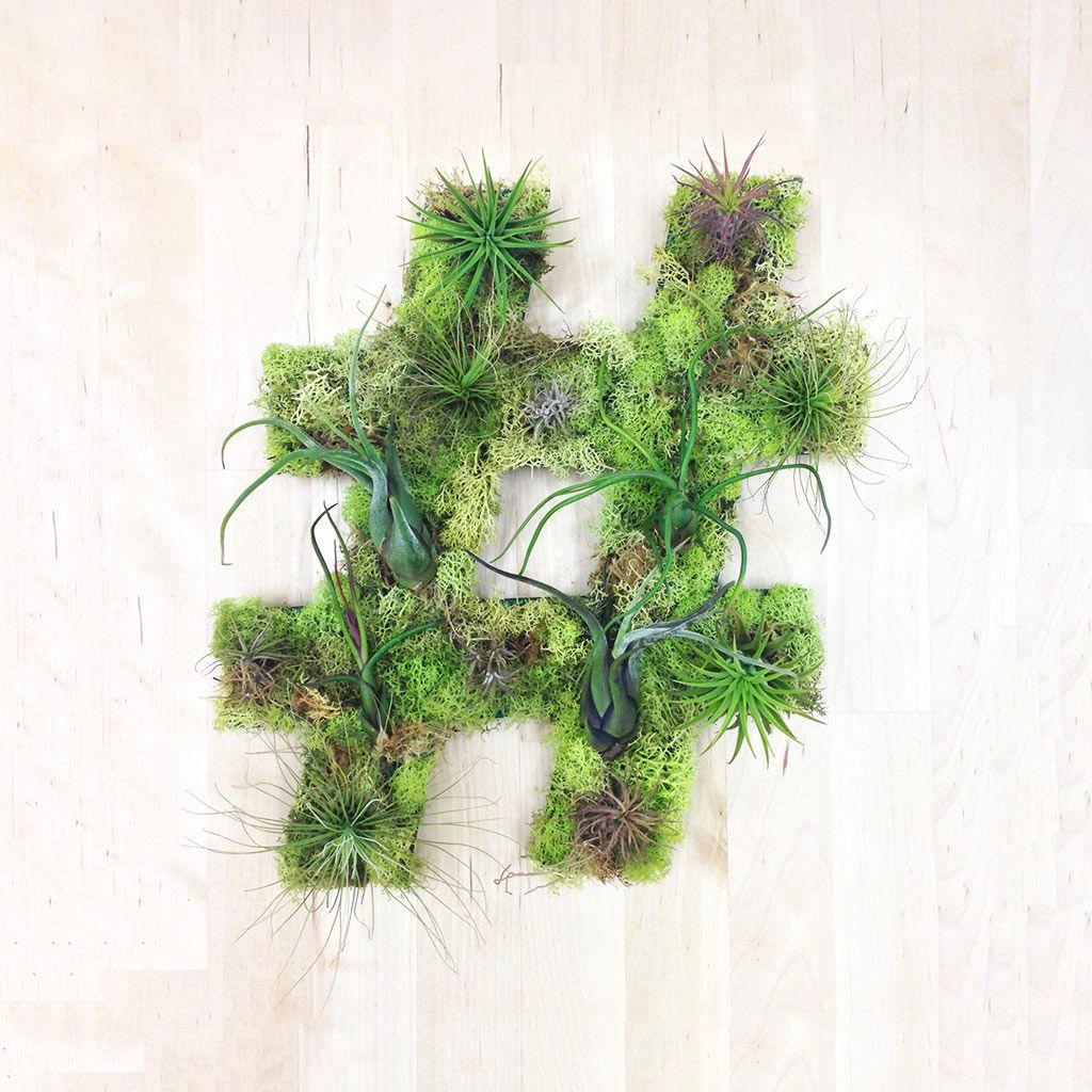 Unique living wall plant decor from art we heart living walls
