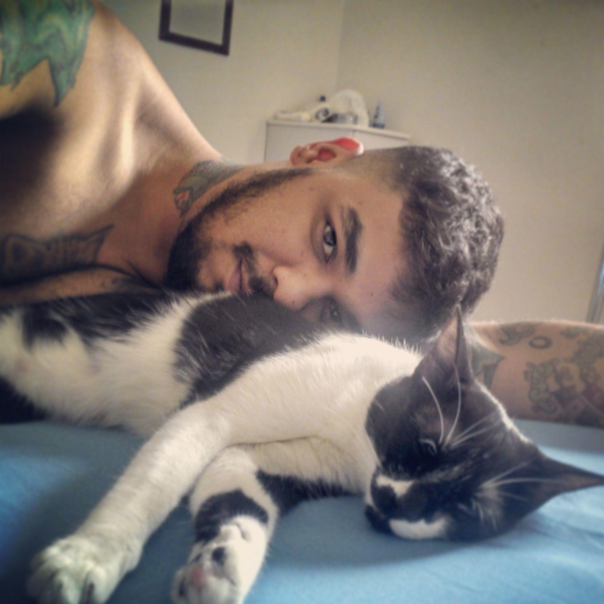 Agora eu era herói e Regina só falava inglês #cat #gatos #instacat #todechico #joãoemaria