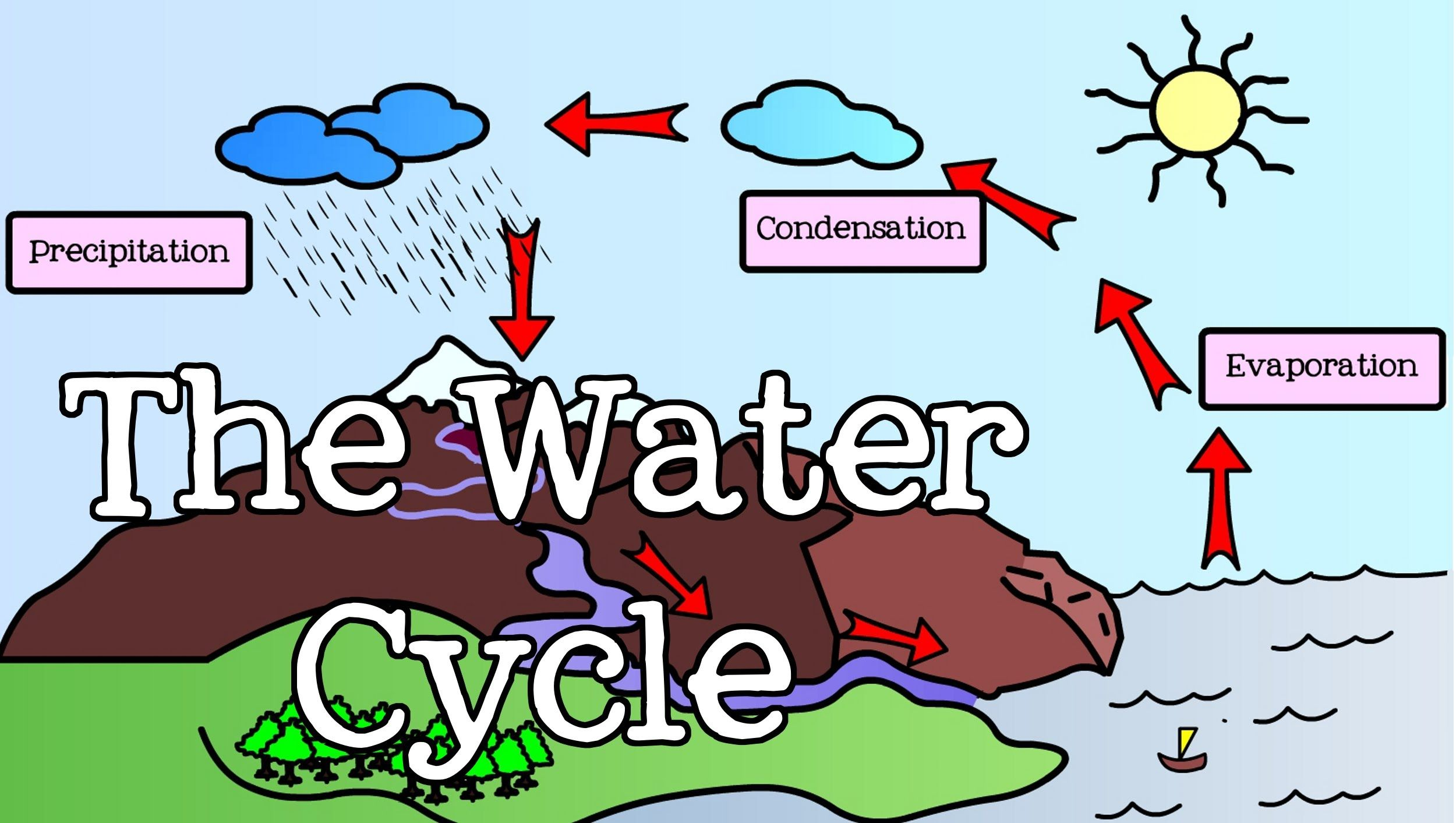 All About The Water Cycle For Kids Introduction To The Water