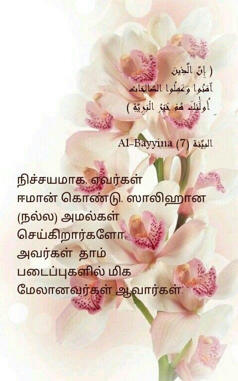 Tamil Quran verses | Quran verses in Tamil | Islamic quotes
