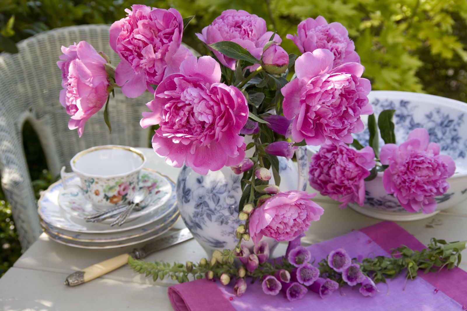 50 Flowers Every Garden Needs Peony And Flowers