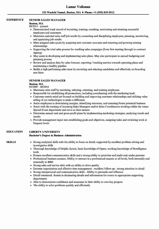 Sales Manager Job Description Resume Elegant Sales Manager