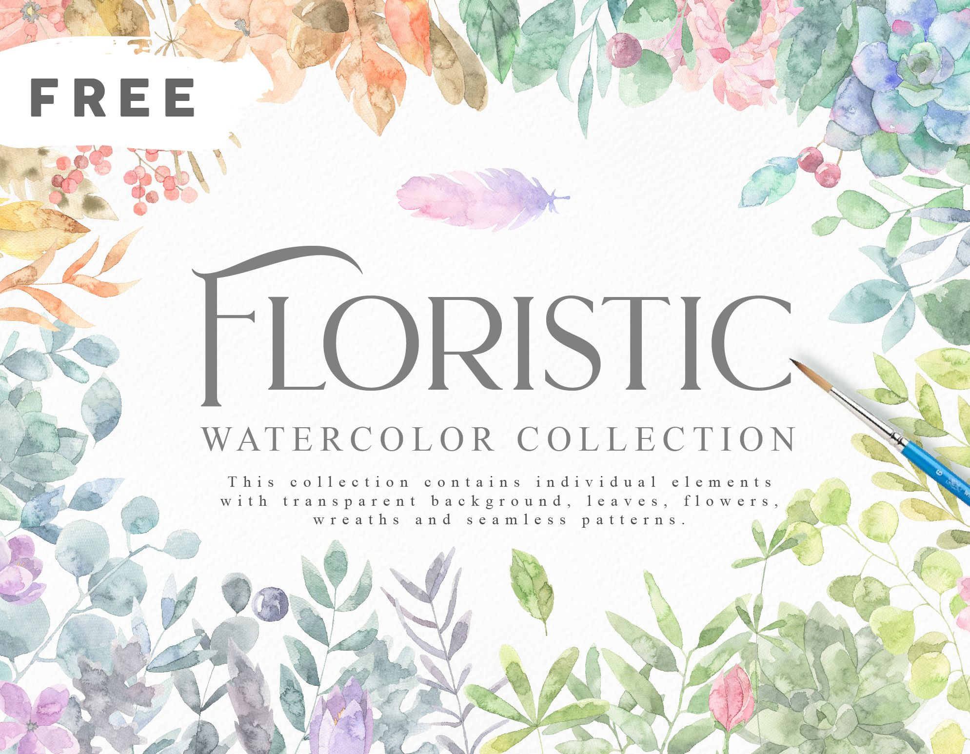 Floristic Watercolor Collection Free Graphics Illustrations