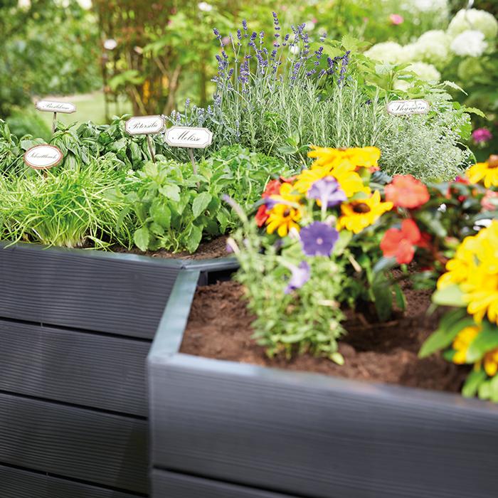 Hochbeete Erleichtern Euch Die Arbeit Garten Pflanzen