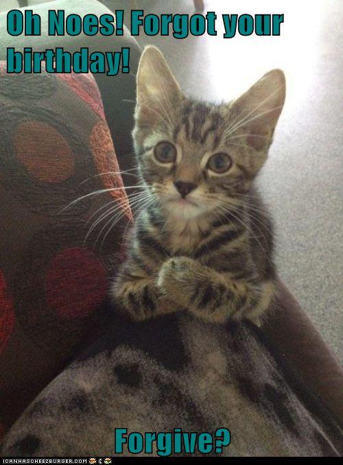 Good Sad birthday cat remarkable, the