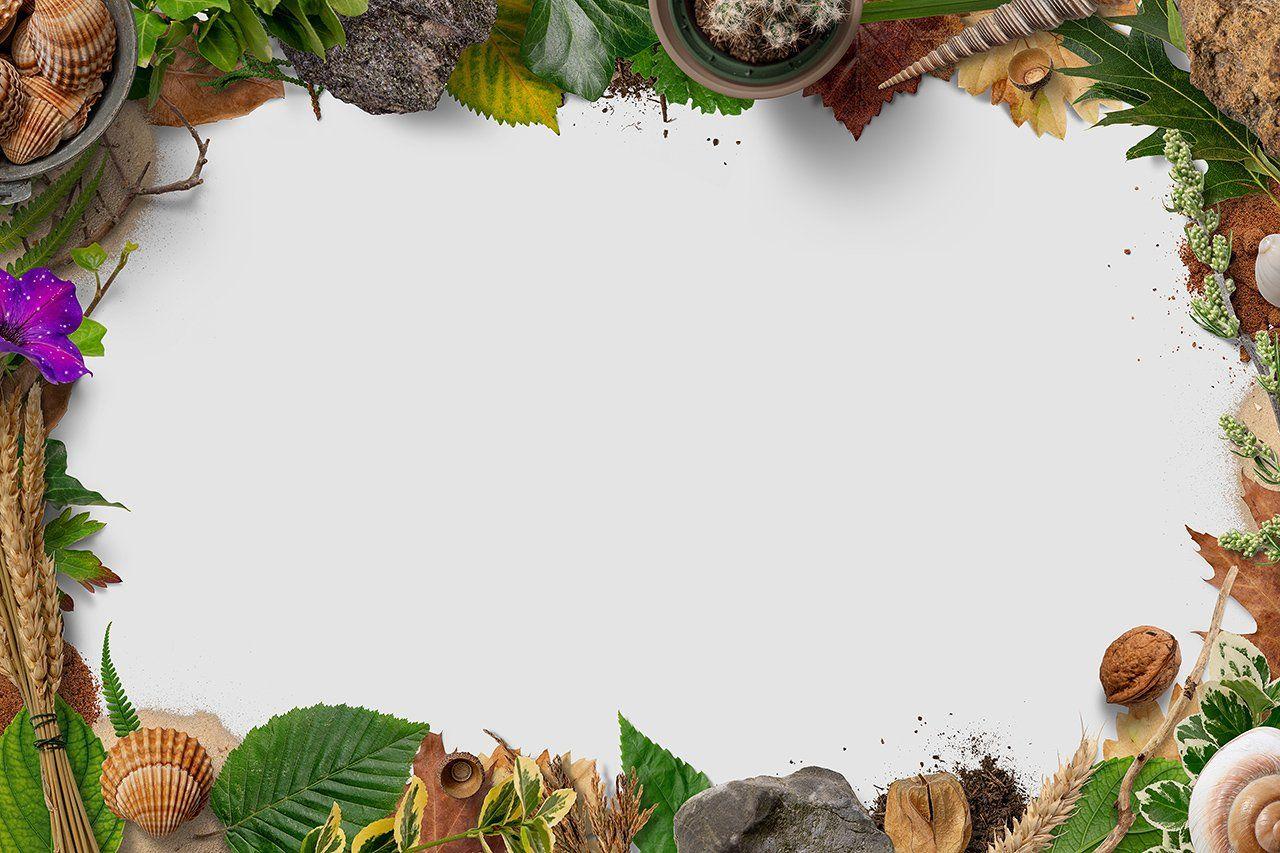 5 Nature Frames Frame Transparent Background Nature