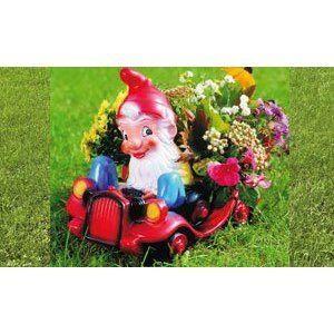 blumen-auto mit zwerg 43 x 35 cm 92541 bepflanzbare figur aus, Gartenarbeit ideen