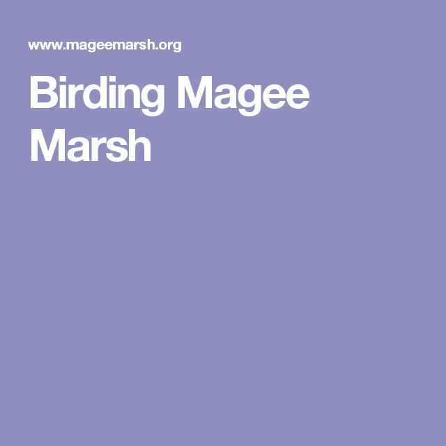 Magee, Marsh, Vacation Trips