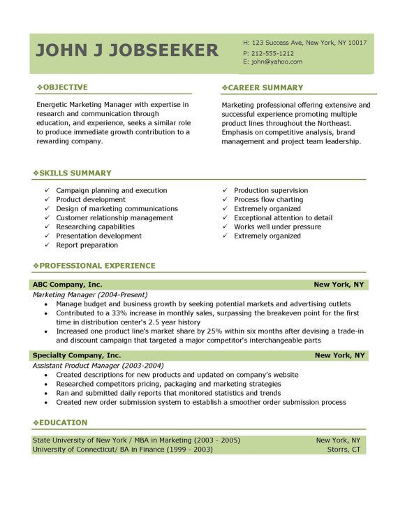 Buy Professional Resume Templates  Professional Resume Template