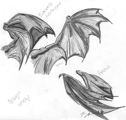 dragon wing patterns - Google Search | Wings drawing ...