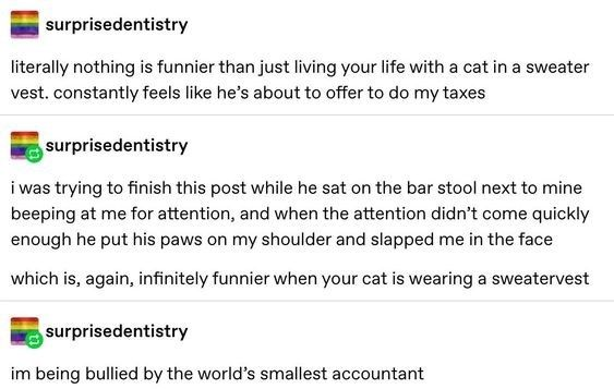 Tumblr Gets Deep And Funny About Animals