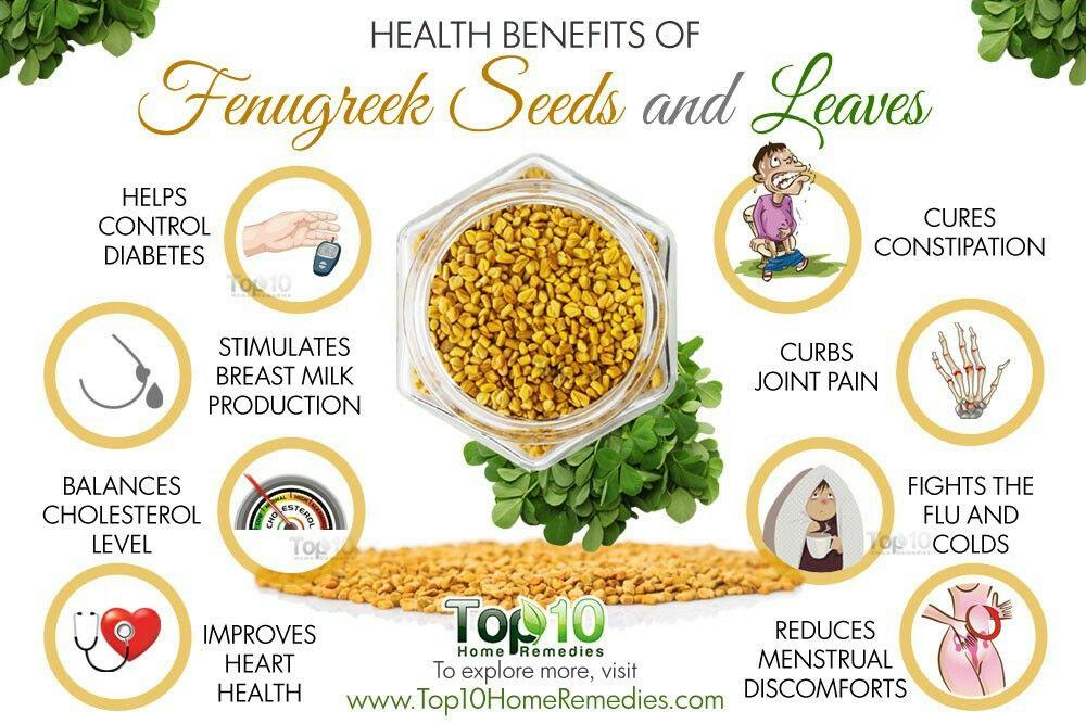 Benefits Of Fenugreek Seeds Home Remedies Fenugreek