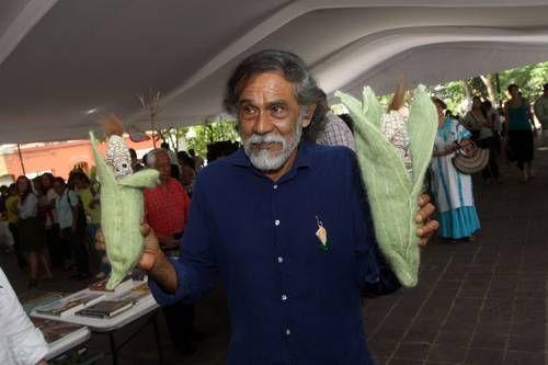 Llama Francisco Toledo a la sociedad para unirse a la cruzada contra el maíz transgénico