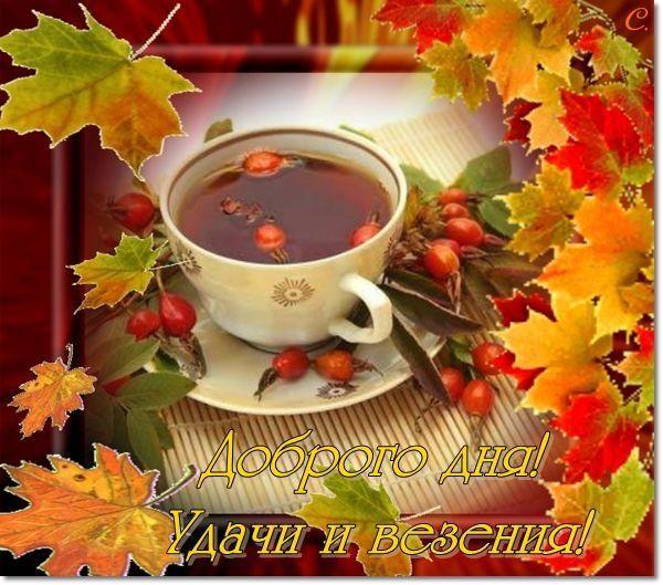 Картинки хорошего дня осень, поздравление