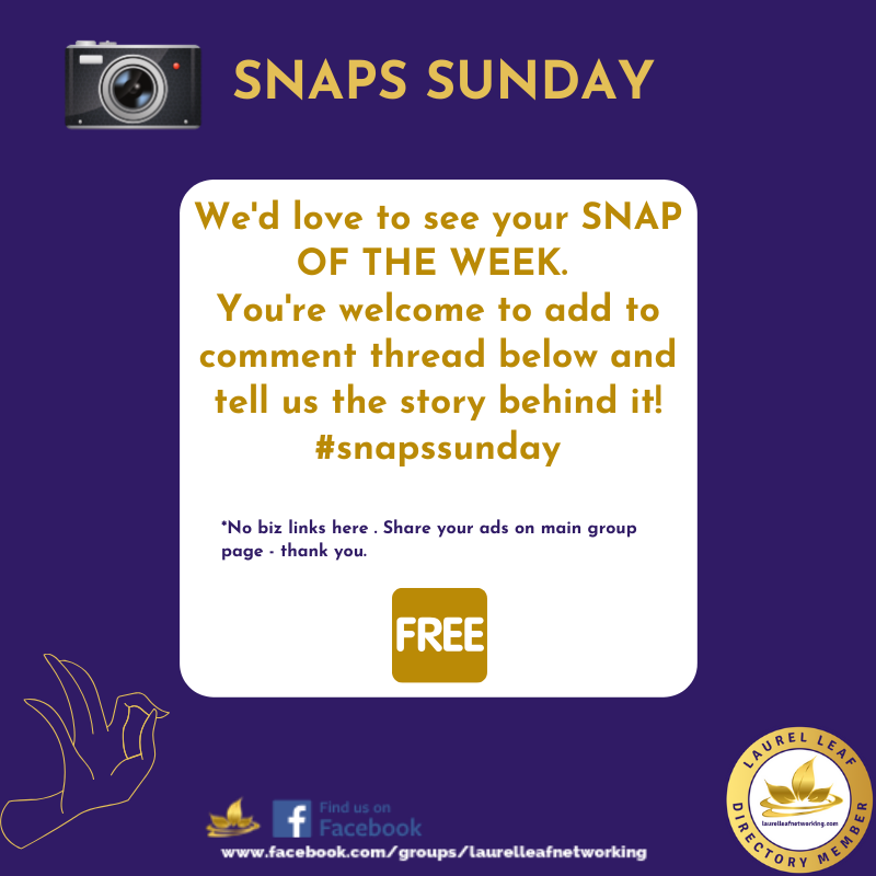 Good Morning And Welcome To Snaps Sunday It S Time To Share Your Snap Of The Week On Our Faceboo Business Networking Online Networking Social Selling