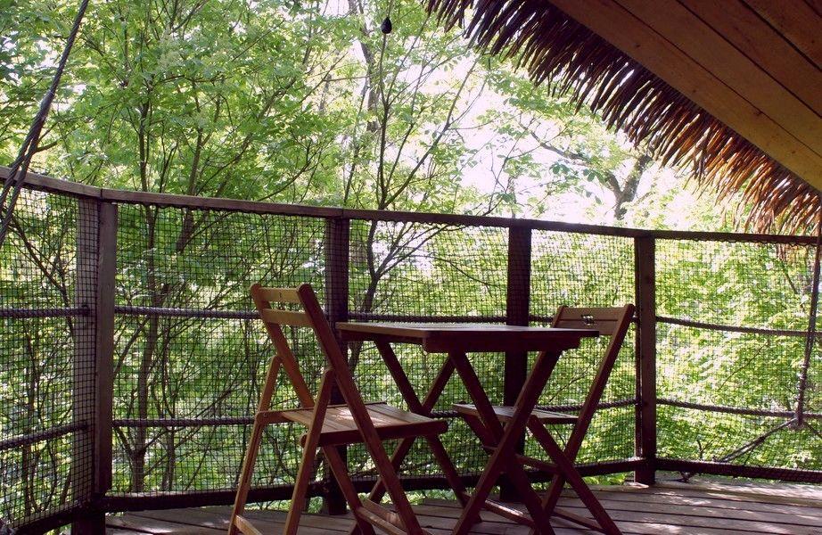 Cabane zen – Cabane dans les arbres insolite à Pons #cabane #cabanedanslesarbres #treehouse