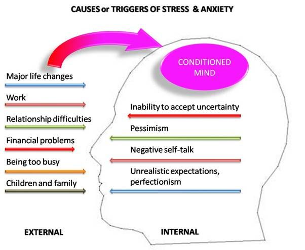 Chronic Stress Effects  Effects Of Chronic Stress  Stress