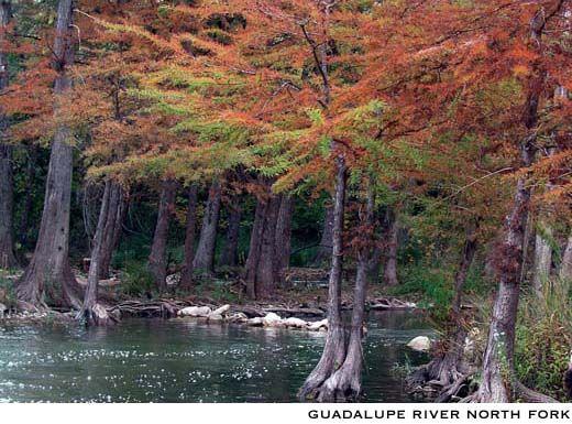 Fredericksburg Texas Guadalupe River North Fork Travel