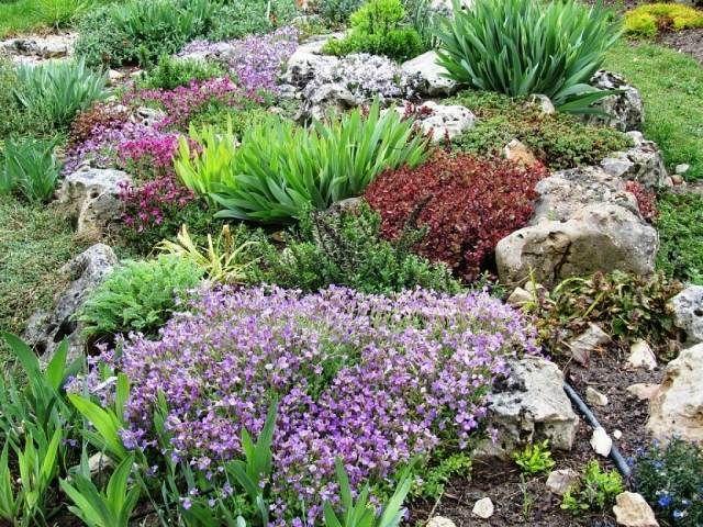 Gartengestaltung Beispiel Steine Bodendecker Polsterstauden Gräser