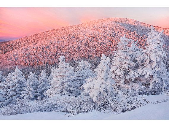 Snowy Trees Sunrise Roan Highlands NC Landscape By