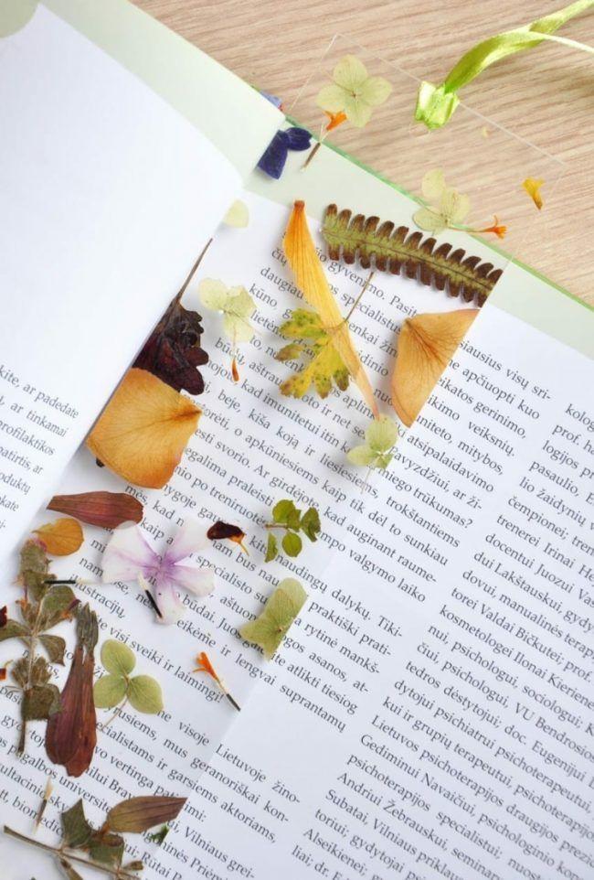 Gepresste Blumen Laminieren Transparent Pflanzen Accessoire