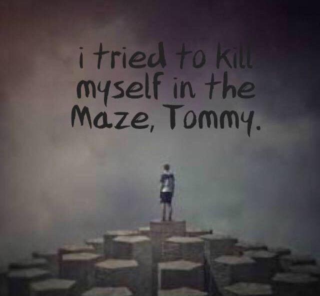 Maze Runner Quotes Pinbluefire On Tmr  Pinterest  Maze Runner Maze And Brodie .