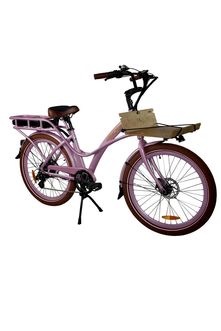 Electric Motorized Bike Electric Motorized Bicycle With Images