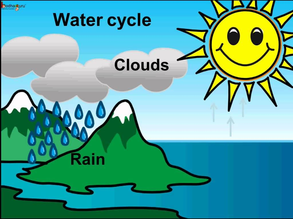 Rain Cycle For Kids