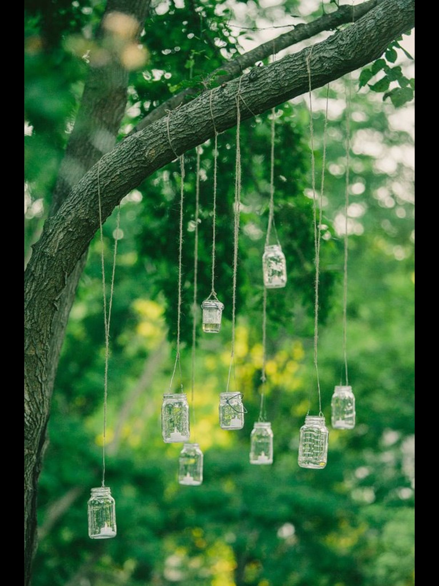 Wedding decorations hanging from trees  Velas colgantes  Velas  Pinterest  Weddings