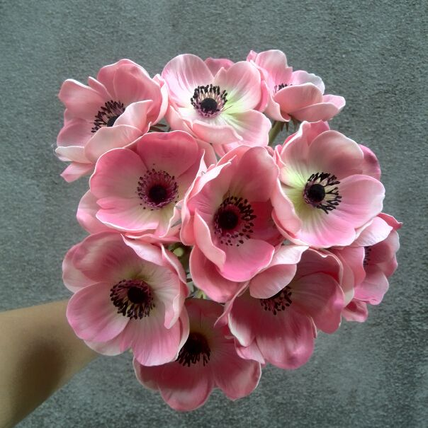 Online Buy Wholesale Artificial Anemone Flower From China Artificial Anemone Flower Wholesalers Anemone Flower Anemone Flowers