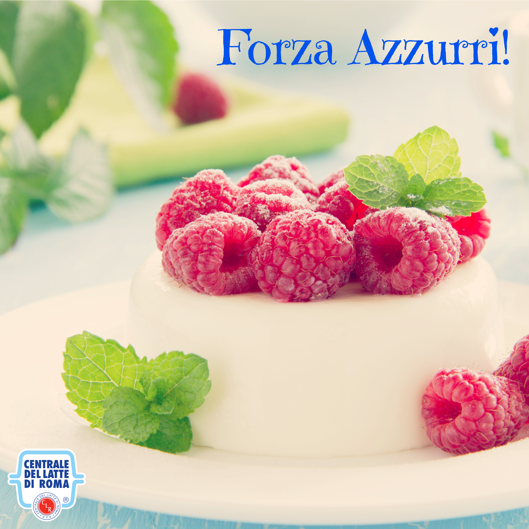 Panna cotta ai lamponi con il tricolore italiano #pannacotta #ForzaAzzurri