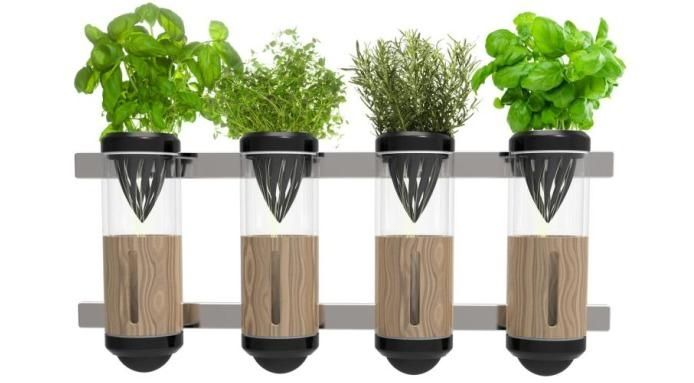 It Is Absolutely Right That Hydroponics Is Successful Future Of The World Without A Doubt Because It I Home Hydroponics Hydroponic Gardening System Hydroponics